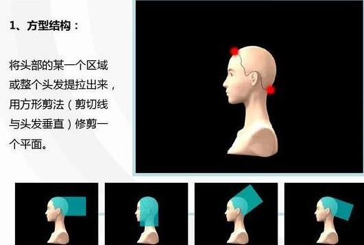 """美发基础""""发型的结构与轮廓"""""""