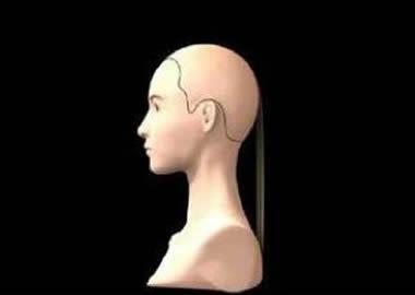 美发基础知识-发型修剪步骤